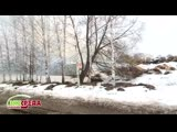 Поселок Киря Алатырского района периодически «утопает» в дыму из-за сжигания отходов не по нормам - Экосреда Чувашия