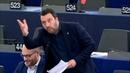 Salvini zur EU-Führung: Ihr seid nicht normal - euch sollte ein sehr guter Arzt therapieren (2017)