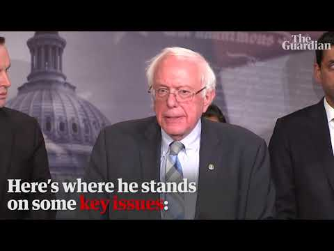 Bernie Sanders 2020: where the presidential candidate stands on key issues – video profile
