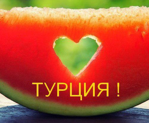 rNhKHD8kX E Турция из СПб 24.02.19 от 25300р. 5* 8дн