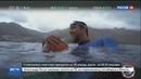 Новости на Россия 24 • Многократный чемпион по плаванию Майкл Фелпс проиграл заплыв акуле