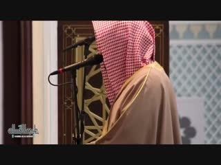 عشائية هادئة من سورة الإسراء للشيخ ناصر القطامي | 20-3-1440