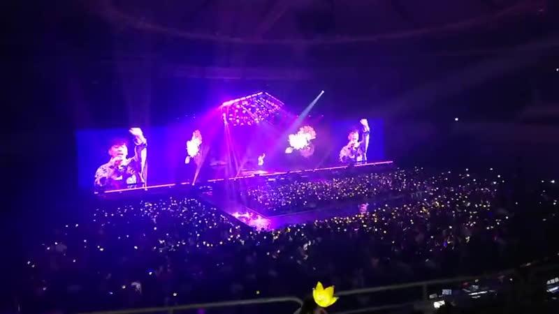 Seungri concert Flower Road ~ 🐼🌺🌺🌺