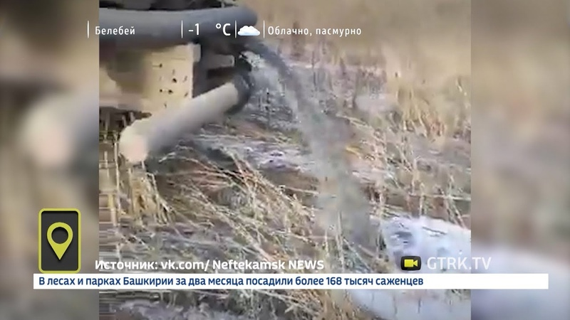 В Башкирии нечистоты с предприятия сливают прямо в поле