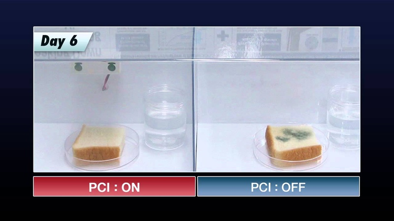 Reducing Growth of Mold demo using Sharp Plasmacluster