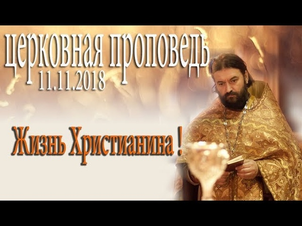 дьявол воюет против нас с пеленок! Протоиерей Андрей Ткачёв