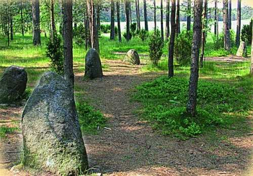 Венсеры. Каменная загадка Польши Каменные круги в кашубских Венсерах до сих пор являются одной из самых таинственных загадок Польши. Версий о их появлении и предназначении – огромное множество.