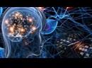 Квантовая физика и сознание человека _ Антропный принцип участия