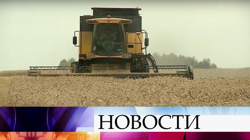 Рекордный урожай пшеницы в России может стать угрозой для американских фермеров.