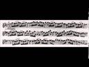 Tomaso Albinoni Oboe Concerto Op 9 No 11