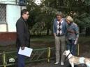 Прокурорская проверка Собачье дело 16