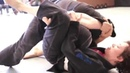 Brazilian Jiu Jitsu | Patterson Blue Belt | Rank Demonstrations | ROYDEAN