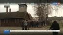 Новости на Россия 24 • Голые вандалы убили овцу и сковали себя цепями возле ворот Аушвица