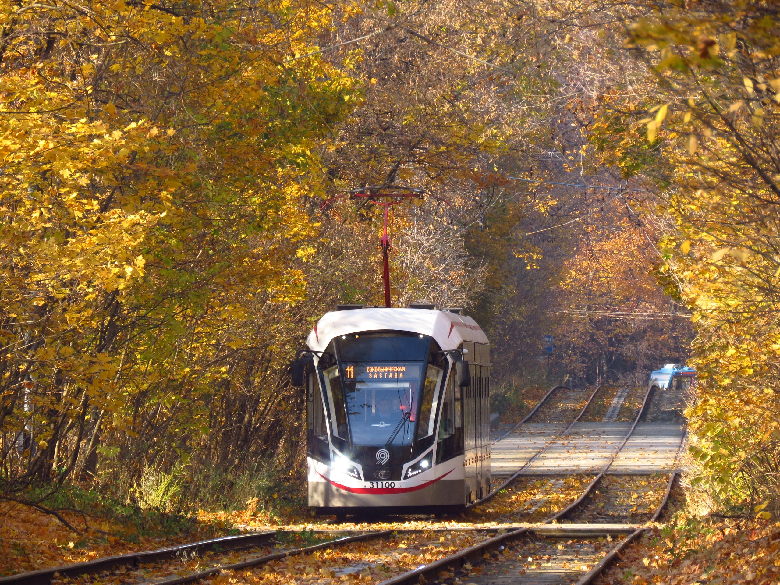 Красивее золотой осени могут быть только трамваи на фоне золотой осени