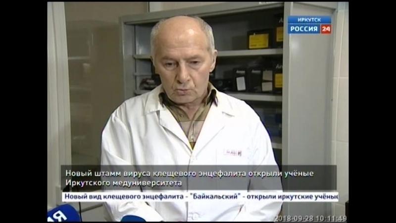 Новый вид клещевого энцефалита открыли иркутские учёные