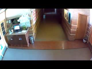Salik.biz : Нечто разгуливает по коридору испанской школы