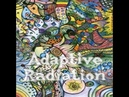 (Stoner Metal). ADAPTIVE RADIATION — «Adaptive Radiation» (2012) [EP] [Full Album]