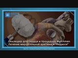 Лечение мерцательной аритмии в клинике