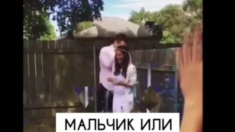 SHOW BABY baby gender Узнай пол ребенка 7(978)726 78 01 Крым-ШОУ