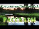 КОНСТАНТИН ПАУСТОВСКИЙ РАССКАЗЫ 09 17
