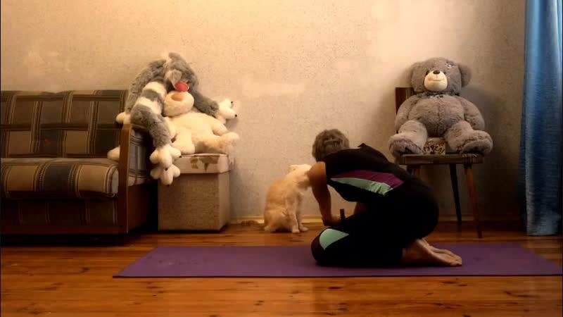 Фитнес дома 5 упражнений на гибкость и силу с роликом гимнастическим