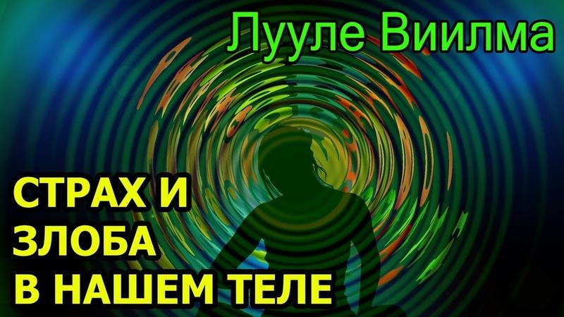 ЛУУЛЕ ВИИЛМА. Страх – пленник человека. Злоба – разрушитель тюрьмы. Оставаться или идти.