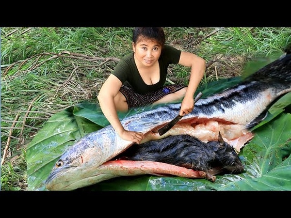 Primitive Technology Cooking Snakehead fish by Girl At river Snakehead Eating delicious 37