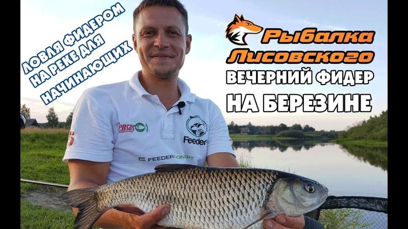 Ловля фидером на реке для начинающих. Рыбалка на Березине.