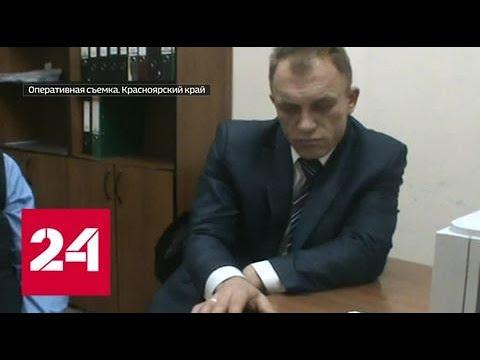Брал много и часто глава красноярского Росприроднадзора сознался в получении взяток Россия 24