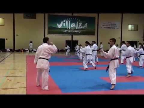 Curso Sergio Martinez (Shiai Kumite) / Federacion Madrileña De Karate/ Villalba 2017.