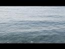 Море,релакс