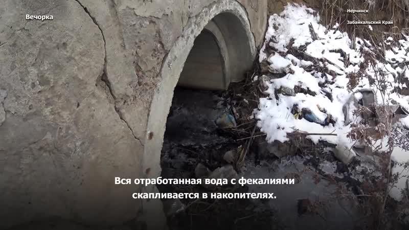 Нерчинск ,Забайкальский край.Тонет в дерьме.