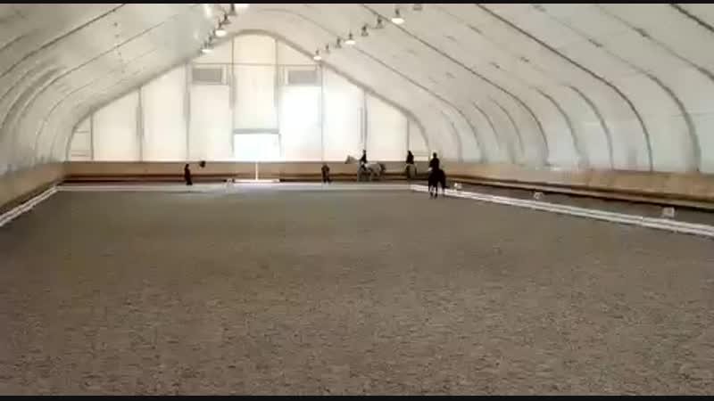 Верховая езда, соревнования, КСК «Конная Лахта»