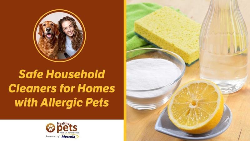 Безопасные чистящие средства для домов с животными аллергиками Safe Household Cleaners for Homes with Allergic Pets