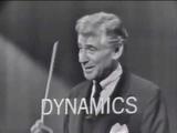 Леонард Бернстайн Концерты Для Молодого Поколения. Звучание Оркестра (русская озвучка)