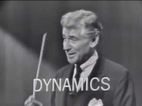 Леонард Бернстайн: Концерты Для Молодого Поколения. Звучание Оркестра (русская озвучка)