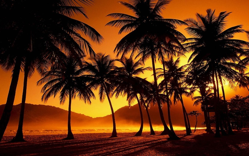 Карибский рай Тринидад и Тобаго