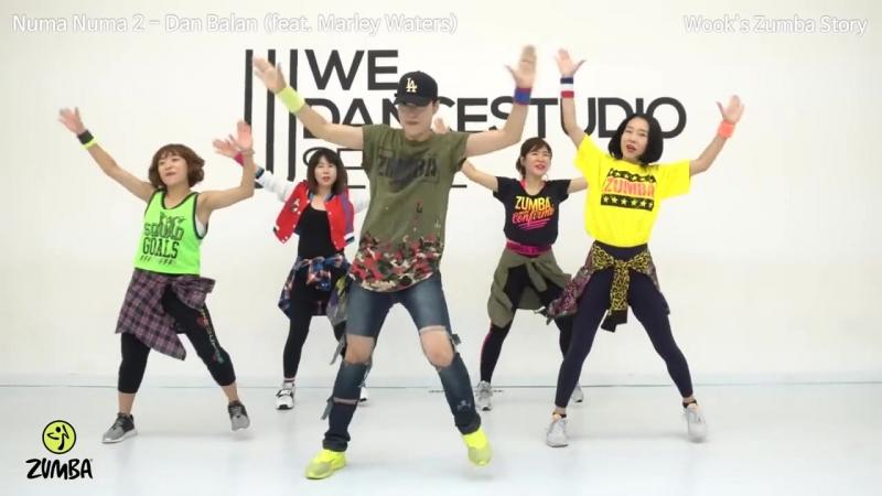 Numa Numa 2 - Dan Balan (feat. Marley Waters) - Dance Fitness Choreography - Wooks Zumba® Story-1