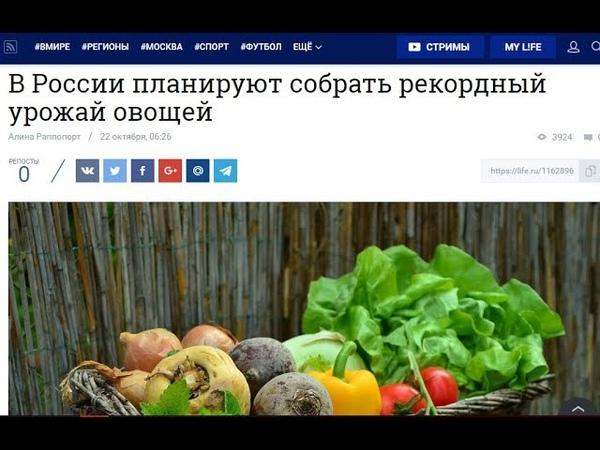 Сбывшееся предсказание об урожайности 2018 году в России