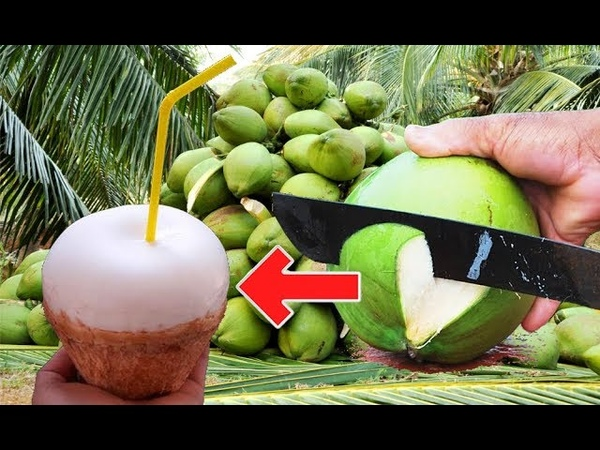 Amazing coconut cutting skills Drinking coconut | How to cut open toddy palm eating fruit