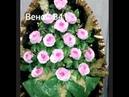 Ритуальные венки и корзины в Санкт Петербурге и пригородах Наш сайт venki