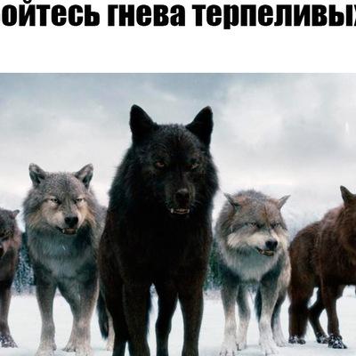 Вадим Паршин