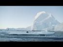 Iceberg Wakeboarding