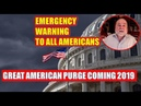 Robert David Steele 🔴 EMERGENCY WARNING TO ALL AMERICANS -Great American Purge Coming 2019