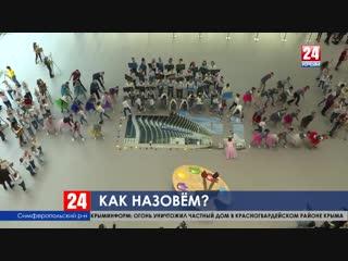 Юные художники Крыма рассказали, чьё имя они хотели бы дать аэропорту Симферополя