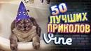 Самые Лучшие Приколы Vine! (ВЫПУСК 125) Лучшие Вайны [17 ]