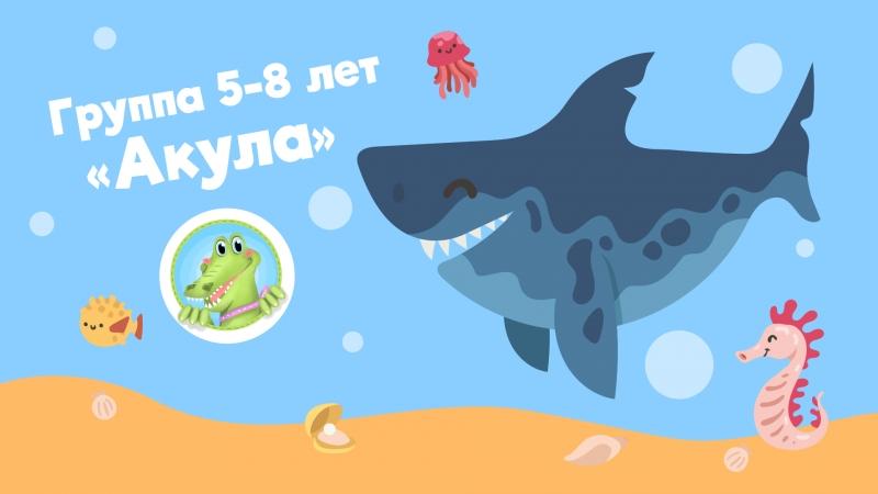 Акула I Группа 5 8 лет