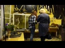 01419 УРГАУ - В МУЗЕЕ СКЕЛЕТЫ СЛОНА НОСОРОГА ДВУХГОЛОВЫХ ДИНОЗАВРОВ РУСАЛКИ И ПЕРВОБЫТНЫХ ЛЮДЕЙ and The МИККИ
