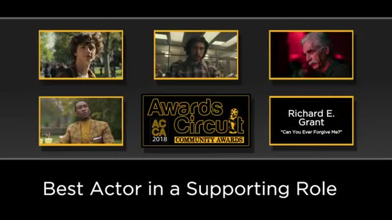 Nomination at the 2018 Awards Circuit Community Awards in Best Actor in a Supporting Role!