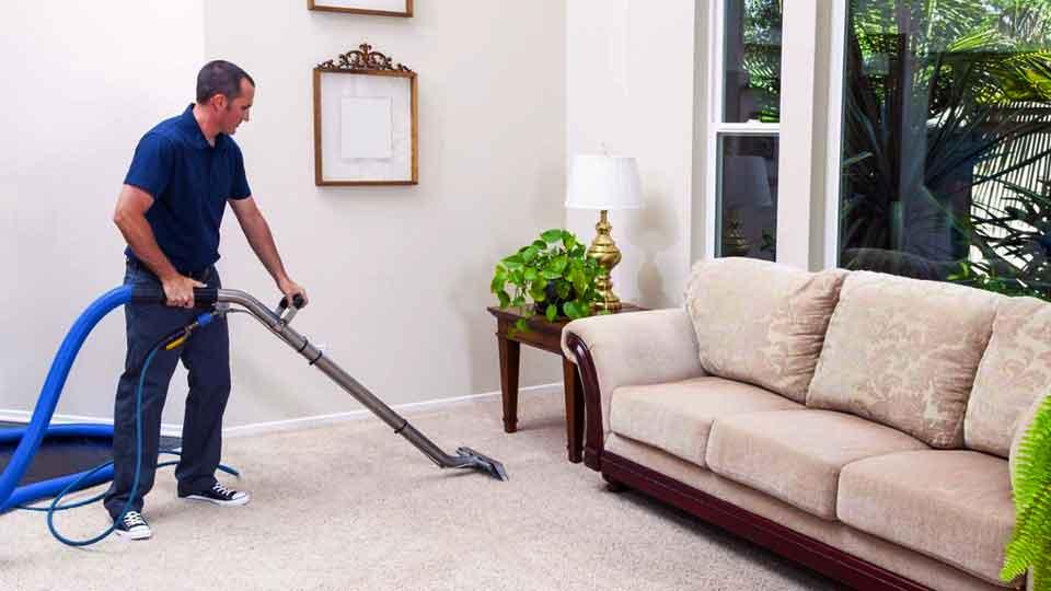 Что делает специалист по чистке ковров?